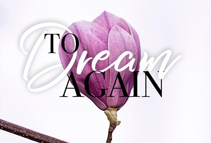To Dream Again